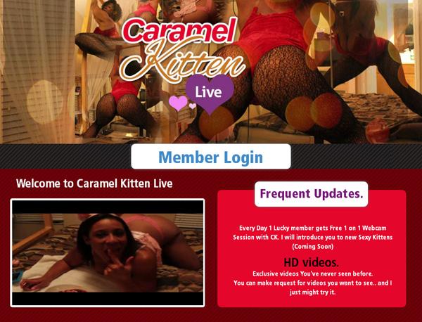 Caramel Kitten Live User And Pass