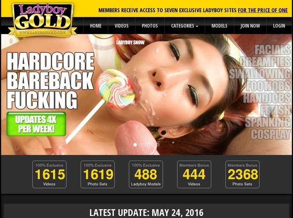 Discount Price Ladyboygold.com