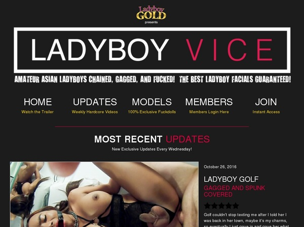Ladyboy Vice Free Passwords
