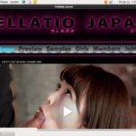 Fellatio Japan Lingerie