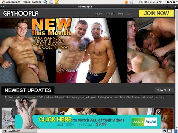 Discount Gay Hoopla Trial